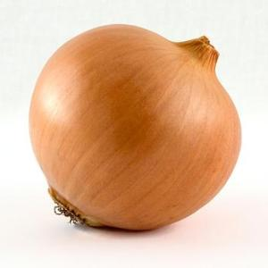 [Real] Caution!  This is an image of a real onion and should under no circumstances be confused with The Onion.  Trigger Alert!  Users who have experienced traumatic encounters, resulting in uncontrollable weeping, with onions in the past may find this image disturbing