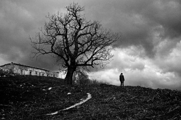 Image of Solitude
